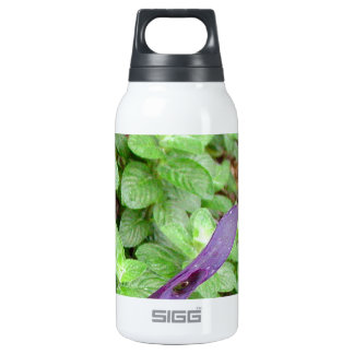 Herb collection Mint photograph art Thermos Bottle