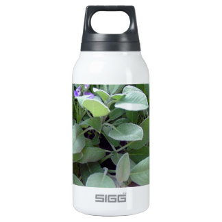 Herb collection sage photograph art thermos bottle