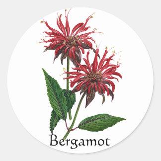 Herb Garden Series - Bergamot Classic Round Sticker