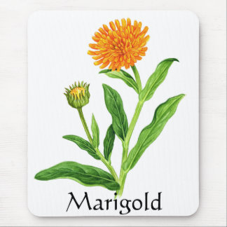 Herb Garden Series - Marigold Mouse Pad