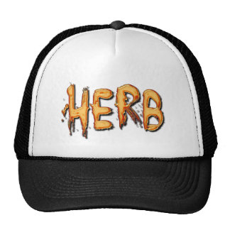HERB Name-Branded Personalised Fashion Cap Mesh Hats
