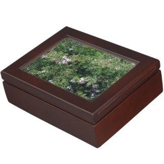 Herb Plant Memory Boxes