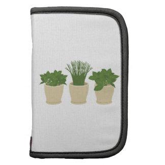 Herb Plants Organizer