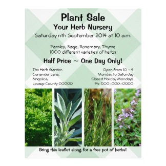 Herb plants promotional sales flyer