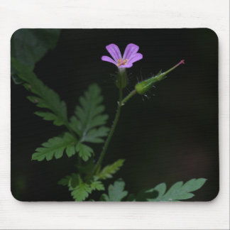 Herb Robert Geranium Pink Wildflower Mousepad