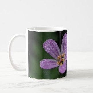 Herb Robert Geranium Pink Wildflower Mug Cup
