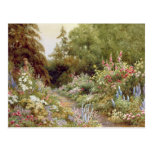 Herbaceous Border Post Card