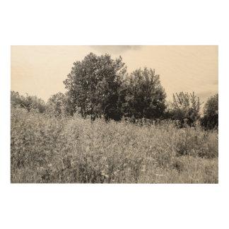 Herbage Wood Print