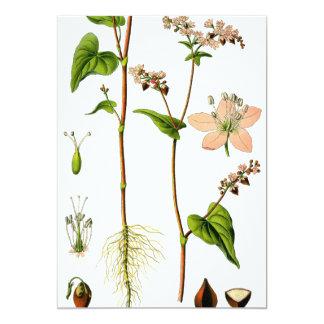 Herbal Pink Flower Card