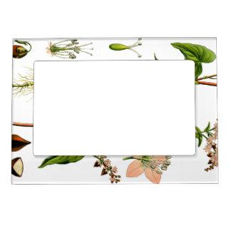 Herbal Pink Flower Magnetic Photo Frame