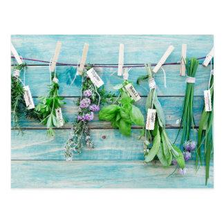 herbals en la pared de madera pintada turquesa del tarjeta postal