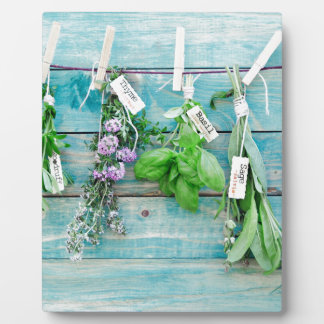 herbals on vintage turquoise painted wood wall photo plaques
