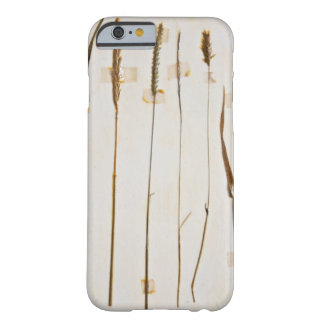 Herbarium Barely There iPhone 6 Case
