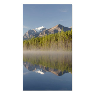 Herbert Lake at Icefields Parkway Alberta Canada Business Card
