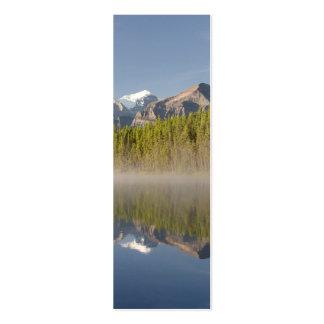 Herbert Lake at Icefields Parkway Alberta Canada Mini Business Card