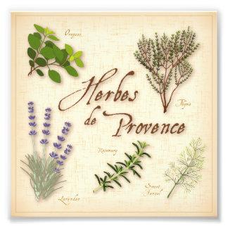 Herbes de Provence, Recipe, Lavender, Thyme, Photo Print