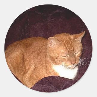 Herbie el gato de la mermelada anaranjada pegatina redonda