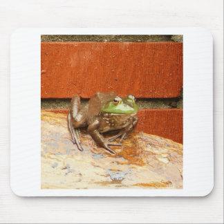 Herbie la rana tapetes de ratones