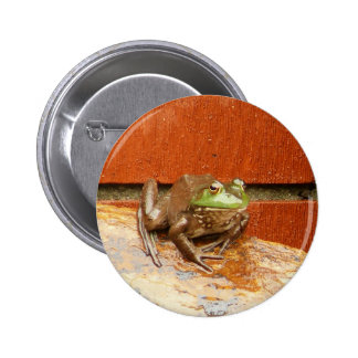 Herbie the Frog Pinback Button