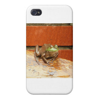 Herbie the Frog iPhone 4/4S Covers