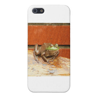 Herbie the Frog iPhone 5/5S Covers