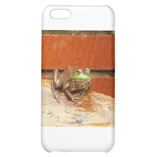 Herbie the Frog iPhone 5C Cases