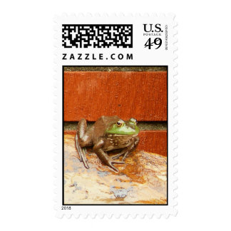 Herbie the Frog Postage Stamp