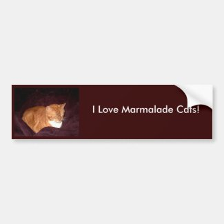 Herbie the Orange Marmalade Cat Bumper Sticker