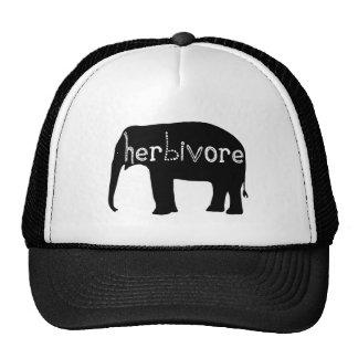 Herbívoro - elefante gorras de camionero