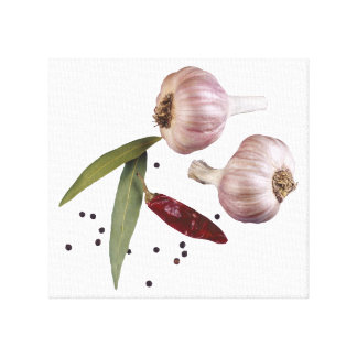Herbs and Spices Canvas Print