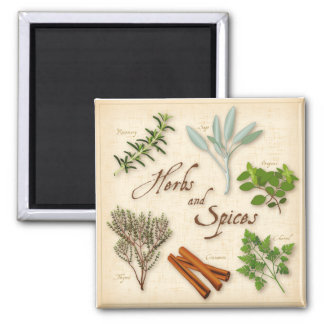 Herbs and Spices, Rosemary, Sage, Thyme, Cinnamon Magnet