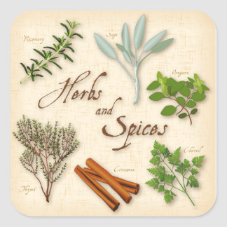Herbs and Spices, Rosemary, Sage, Thyme, Cinnamon Square Sticker