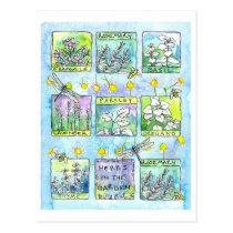 Herbs Garden Dragonflies Honey Bees Watercolor Postcard