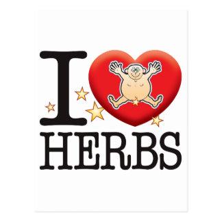 Herbs Love Man Postcard