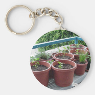 Herbs Spices Peppers Home Garden Keychain