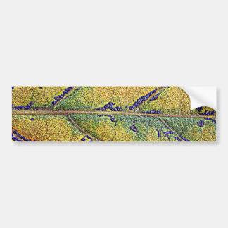 Herbstblatt - by AbBe Car Bumper Sticker