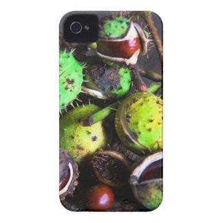 Herbststimmung_mit_Kastanien.jpg Case-Mate iPhone 4 Case