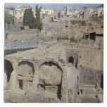 Herculium, Ercolano, Campania, Italy Ceramic Tile