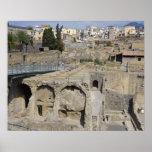 Herculium, Ercolano, Campania, Italy Poster