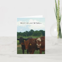 Herd it was Your Birthday Cow Card