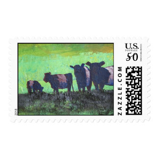 Herd of Belted Galloway Cows postage stamps