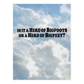 Herd of Bigfoots or Herd of Bigfeet - Basic Postcard