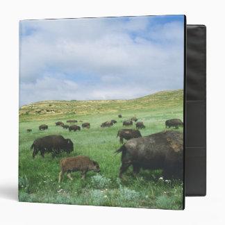 Herd of bison graze prairie grass at Theodore 3 Ring Binders