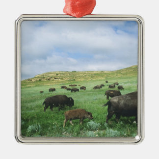 Herd of bison graze prairie grass at Theodore Metal Ornament