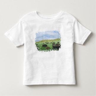 Herd of bison graze prairie grass at Theodore Toddler T-shirt