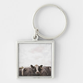 Herd of cattle and overcast sky 2 keychain