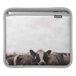 Herd of cattle and overcast sky 2 sleeve for iPads