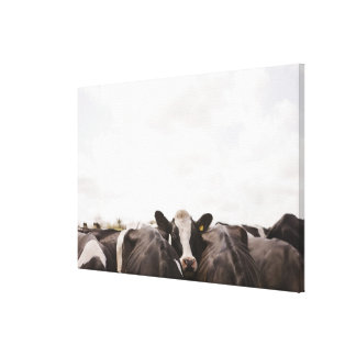 Herd of cattle and overcast sky canvas print