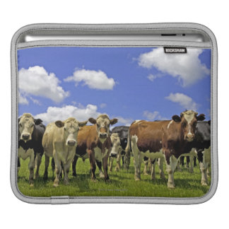 Herd of cattle and overcast sky sleeve for iPads