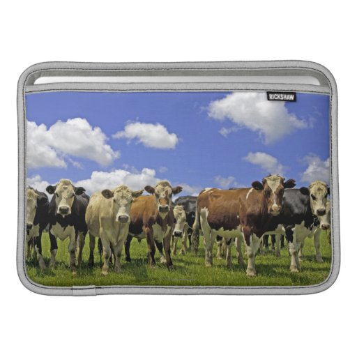 Herd of cattle and overcast sky sleeve for MacBook air